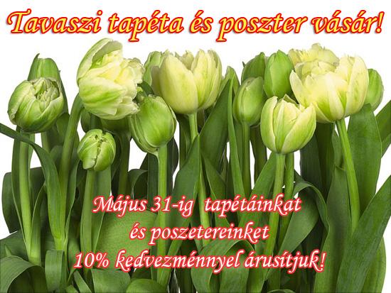 tavasz_twa_550_full.jpg